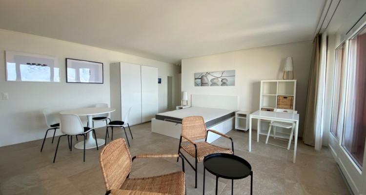 Beau studio meublé avec grand balcon et magnifique vue ! image 7