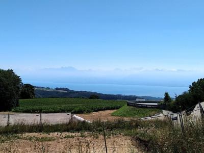 Magnifique vue, 3,5 pièces au rez avec jardin et terrasse à Arzier image 1