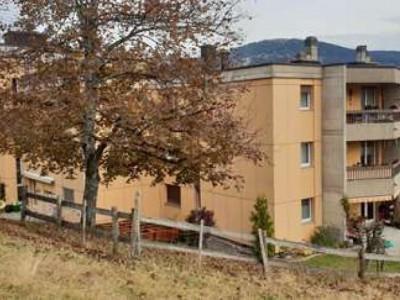 Bel appartement à Chatel-St-Denis  image 1