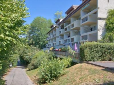 Duplex 4 pièces rénové avec belle vue    image 1