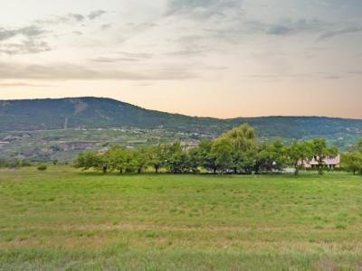 FOTI IMMO - Belle villa mitoyenne de 5,5 pièces avec jardin. image 1