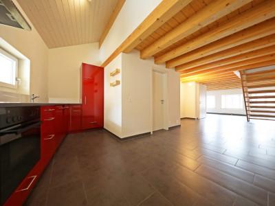 Magnifique duplex 3p // 2 chambres // SDB // image 1