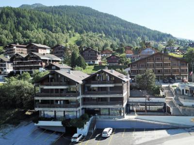 Appartement central proche des pistes de ski et de toute commodité image 1