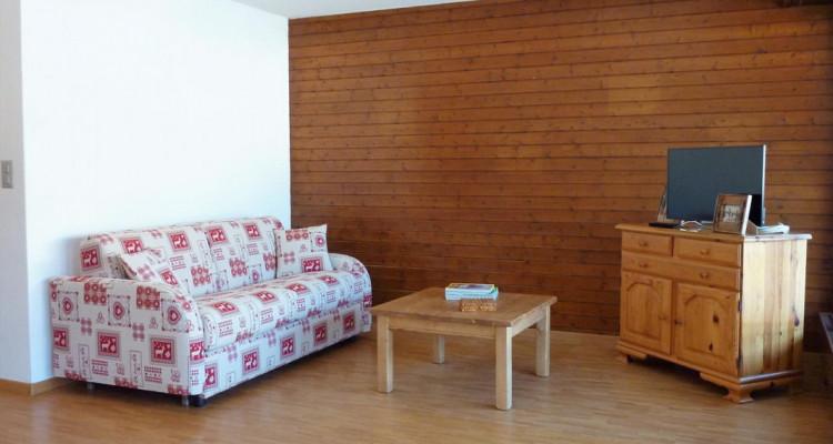 Appartement central proche des pistes de ski et de toute commodité image 2
