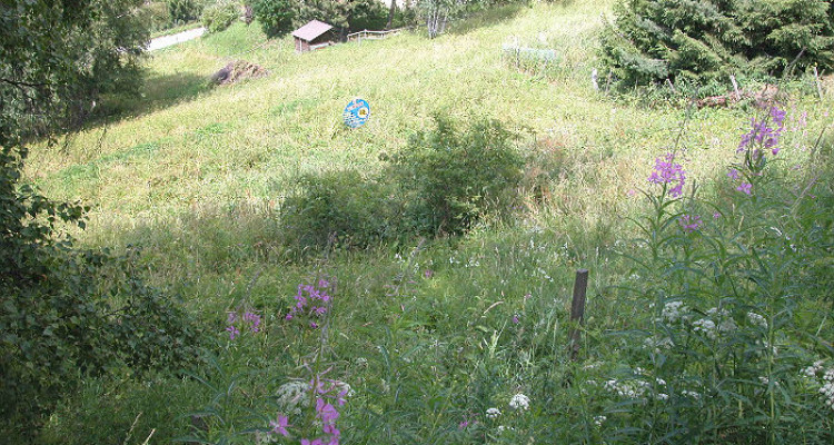 Situé au lieu-dit Avouintzet. En zone chalet. Vue imprenable sur les Alpes Bernoises et la vallée du Rh&ocirc;ne.<br /> <br /> &bull; parcelles n&deg;2473 et 2474 de 739 m2<br /> &bull; en zone chal image 3
