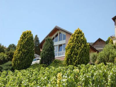 Villa- Corin - 15 minutes de Crans-Montana et 5 minutes de Sierre  image 1