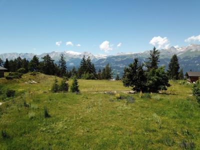 Situation : Situé au lieu-dit Roches-Hombes. Situation dominante, calme et ensoleillée, avec magnifique vue sur la Vallée du Rhône et le Val dAnniviers. • terrain entièr image 1