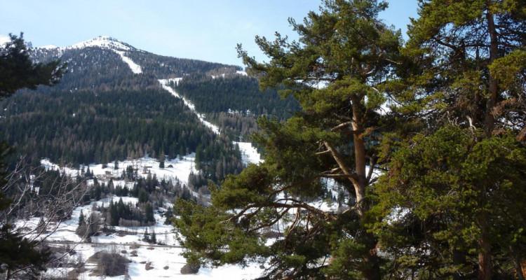 Terrain Plein SUD - Plan Cerisiers - Parcelle n° 2012  - autorisation à bâtir à disposition - résidence principale  image 4