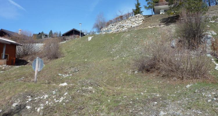 Terrain Plein SUD - Plan Cerisiers - Parcelle n° 2012  - autorisation à bâtir à disposition - résidence principale  image 3