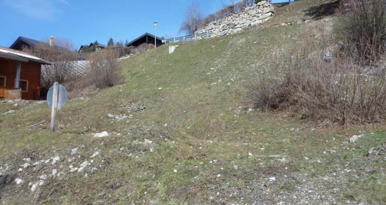 Terrain Plein SUD - Plan Cerisiers - Parcelle n° 2012  - autorisation à bâtir à disposition - résidence principale  image 7