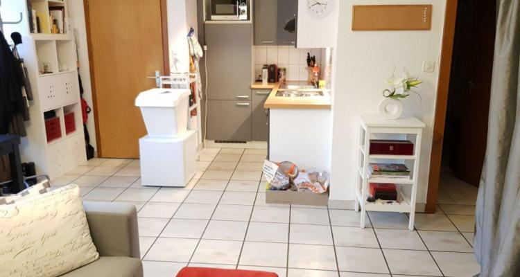 Beau studio 1.5 pièces / jardin collectif et potager privé image 4