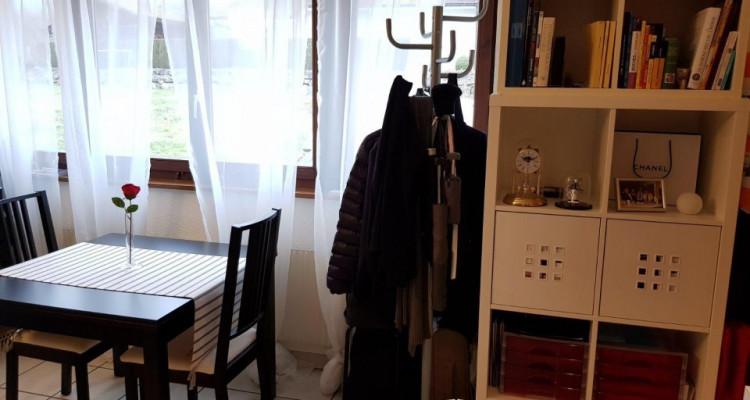 Beau studio 1.5 pièces / jardin collectif et potager privé image 5