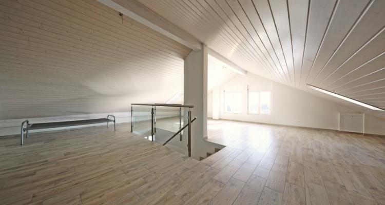 3D // Superbe villa / 6,5 p / 4 chambres / 2 SDB / Jardin avec vue image 9