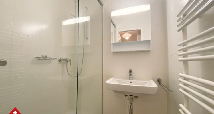 3D // Superbe appartement 3,5 p / 2 chambres / 1 SDB / au centre-ville image 5