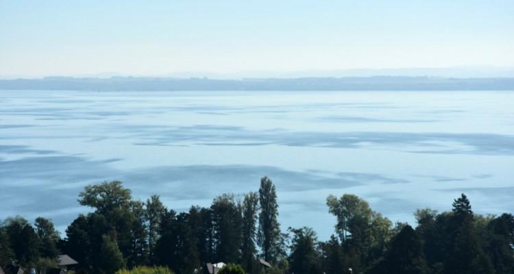 Vue panoramique extraordinaire sur le lac et les Alpes  image 1