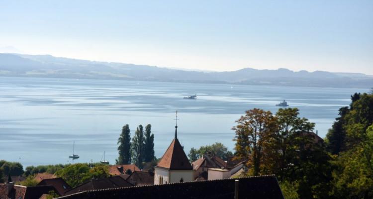 Vue panoramique extraordinaire sur le lac et les Alpes  image 2