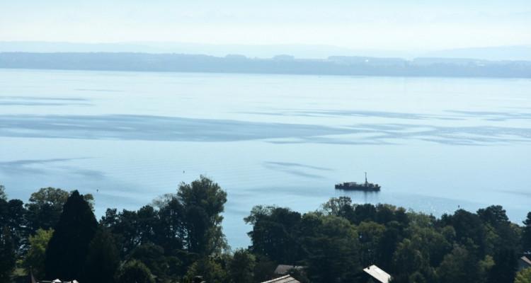 Vue panoramique extraordinaire sur le lac et les Alpes  image 3