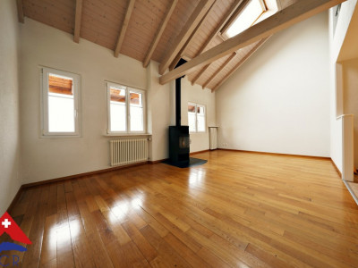 VISITE 3D / Superbe appartement duplex  / 3 chambres / 2 SDB / jardin image 1