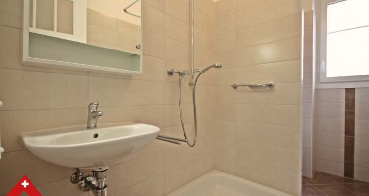 3D // Magnifique appartement 3,5 p / 2 chambres / SDB / Balcon  image 6