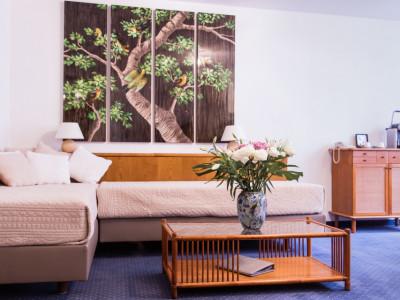 Appartement meublé Rive Gauche image 1