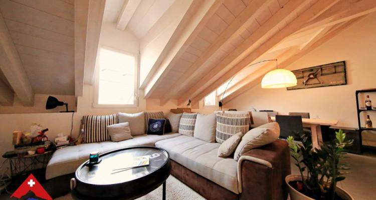 Sublime appartement 3.5p / 2 chambres / 1 grand salon / 2 SDB image 1