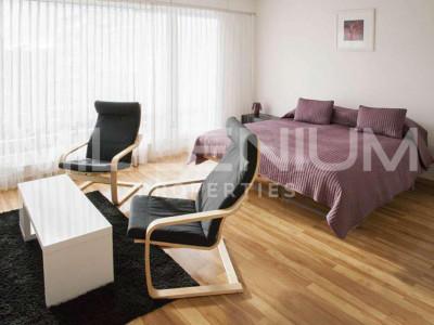 Grand studio 2P meublé avec jolie vue image 1