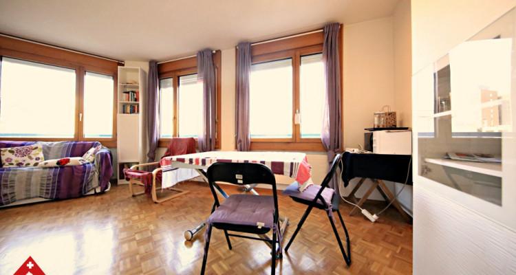Magnifique grand studio partiellement meublé /  proche HUG  image 6