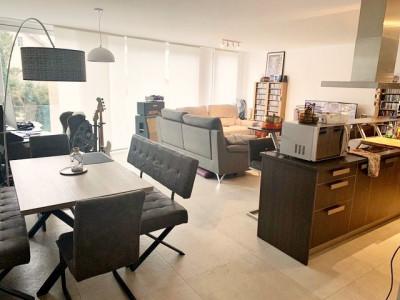 Superbe appartement 2.5 p / 1 chambres / SDB / Proximité commodités image 1