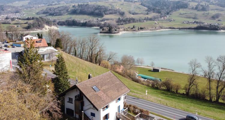 Maison de 2 appartements avec vue panoramique sur le lac de la Gruyère image 1