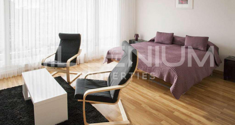 Grand studio 2P meublé avec jolie vue image 2