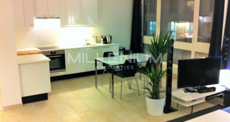 Très bel appartement meublé de 2,5 P au centre de Genève. image 2