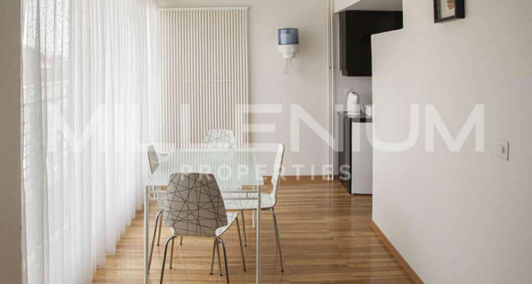 Grand studio 2P meublé avec jolie vue image 6