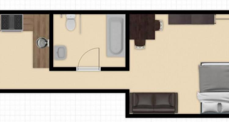 Appartement meublé 2.0 en centre ville de Genève image 4