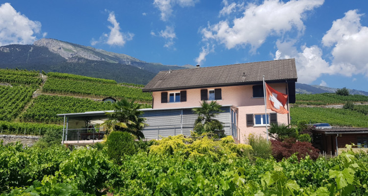 Superbe villa sur les hauteurs, au milieu des vignes image 1