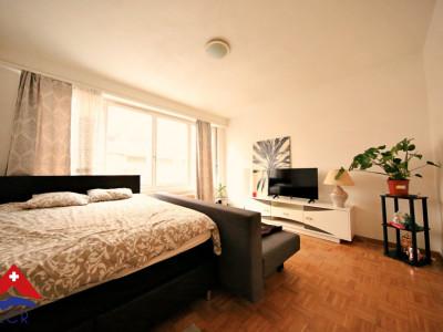 Bel appartement meublé 2 pièces / Chambre / Cuisine / SDB image 1
