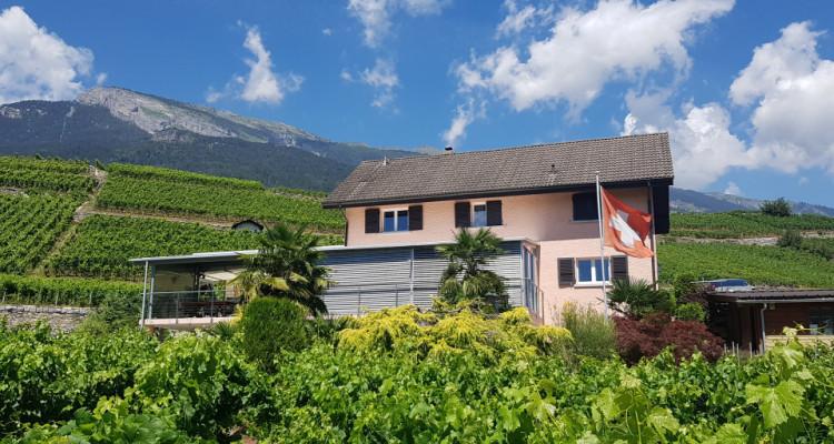 Superbe villa + 2 parcelles de vignes sur les hauteurs de Conthey image 1