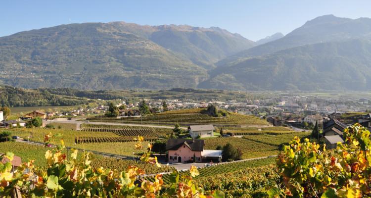 Superbe villa + 2 parcelles de vignes sur les hauteurs de Conthey image 5