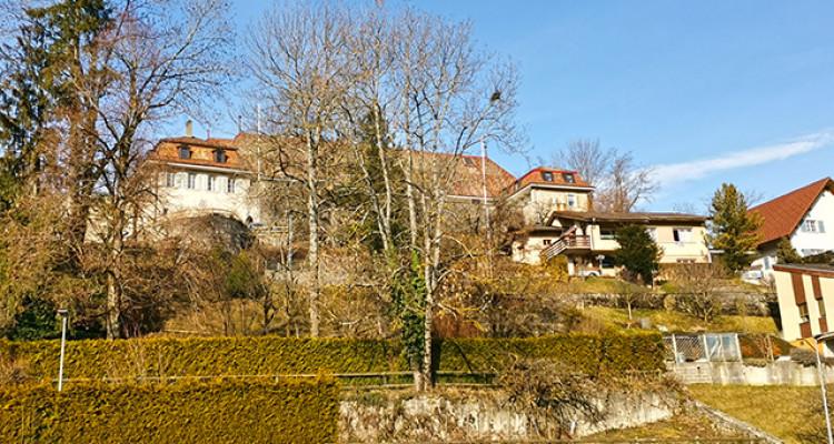 CHÂTEL-ST-DENIS AGGLOMERATION - DUPLEX DE STANDING - 8092407 image 1