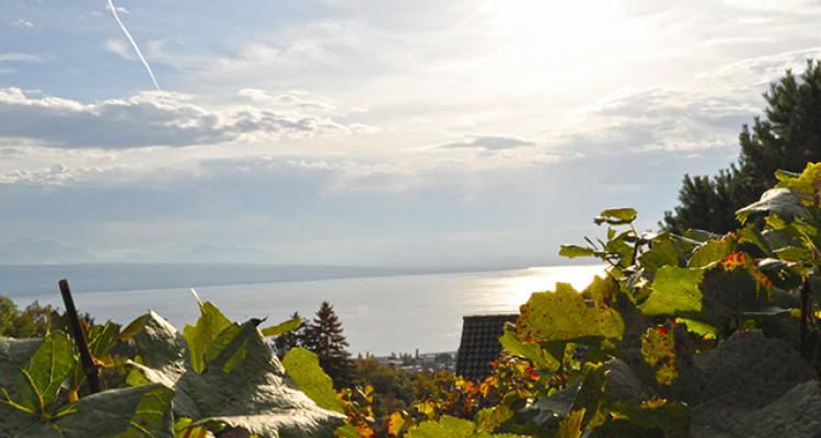 BELMONT-SUR-LAUSANNE - VILLA EXCEPTIONNELLE - 8092430 image 1