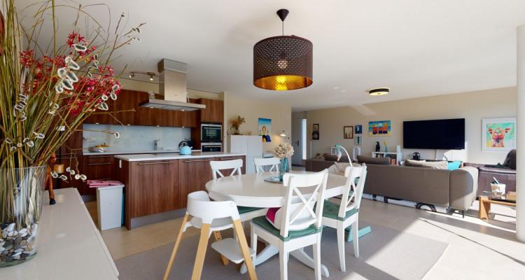 Très bel appartement duplex avec vue panoramique aux Monts-de-Corsier image 4