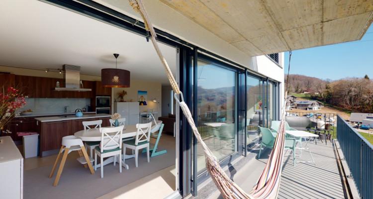 Très bel appartement duplex avec vue panoramique aux Monts-de-Corsier image 8