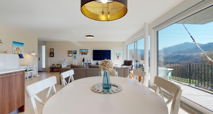 Très bel appartement duplex avec vue panoramique aux Monts-de-Corsier image 9