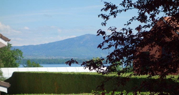 Crans-Céligny, proche de Nyon, belle et spacieuse villa avec piscine image 4