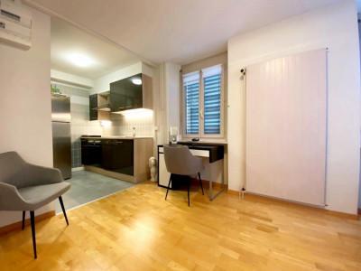 Superbe studio meublé // Centre-ville de Nyon image 1