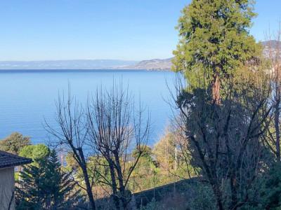 Magnifique 2,5 pièces avec vue imprenable sur le lac  image 1