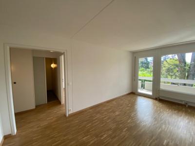 Charmant appartement rénové au centre ville image 1