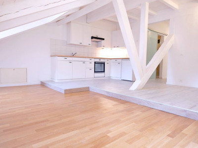 Magnifique appart 3,5 p / 2 chambres / 1 SDB / mezzanine  image 1