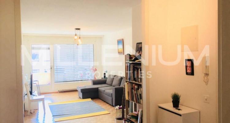 Appartement meublé 4.5P au Grand -Saconnex image 3