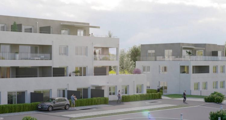 Magnifique appartements 2,5 pièces à Orbe (Sous-le-Signal)  image 5
