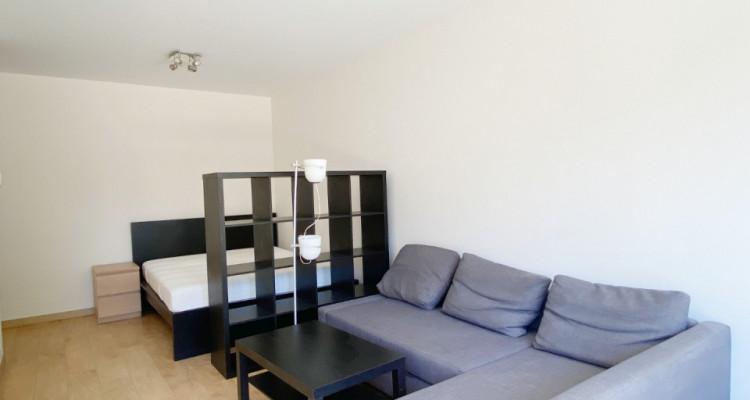 Studio meublé avec terrasse à deux pas des HUG image 2
